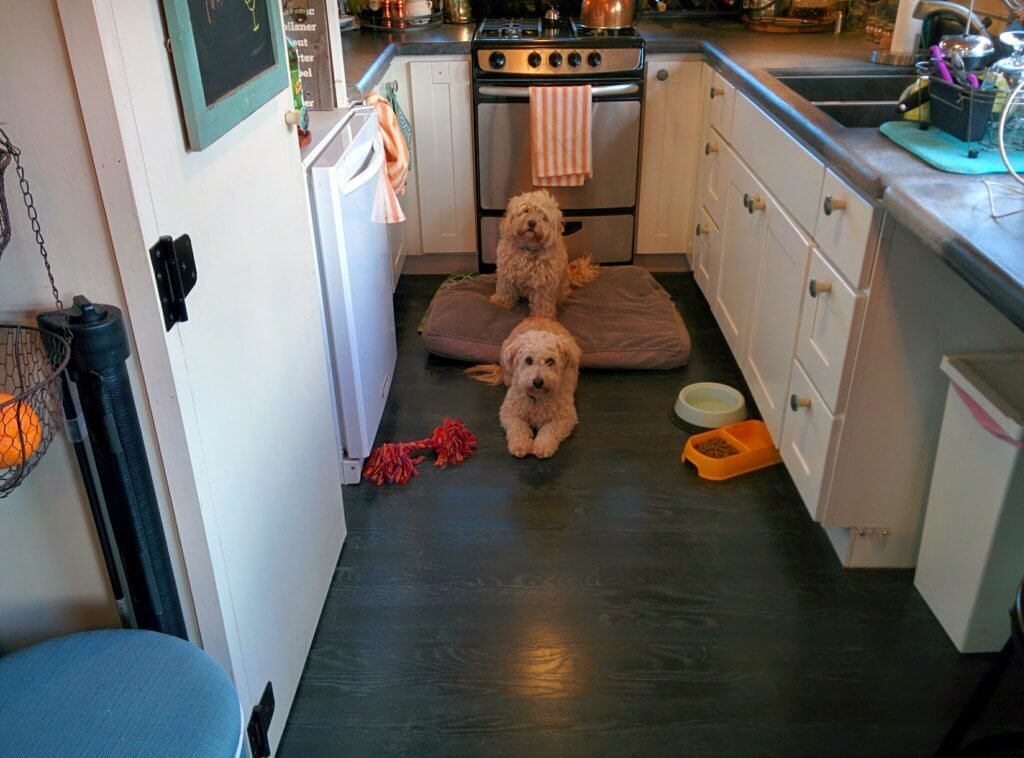 What To Do If You Have Pets In A Tiny House Tiny House